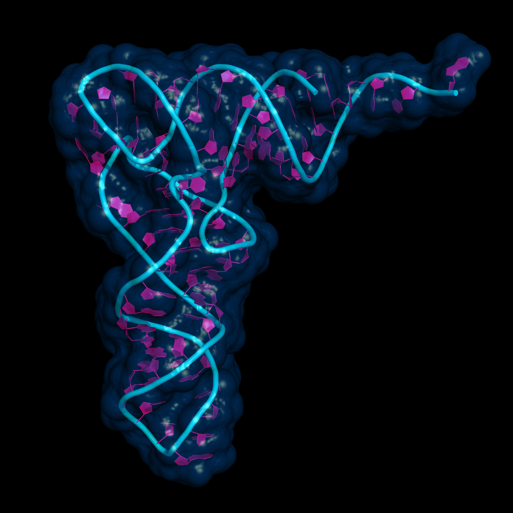 Researchers Discover Gene Expressions Caused by Small Molecules May Lead to Endometriosis