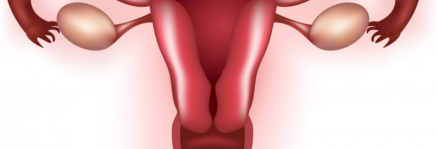 Estrogen May Promote Endometriosis Through Transcription Factor Expression