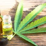cannabis and pain relief