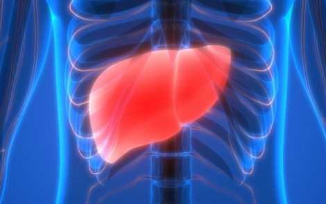Why Is Liver Health Important for Endometriosis?