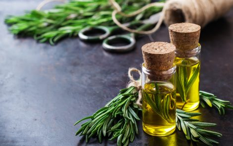 Medicinal Herb Reduces Size of Lesions in Rat Model of Endometriosis