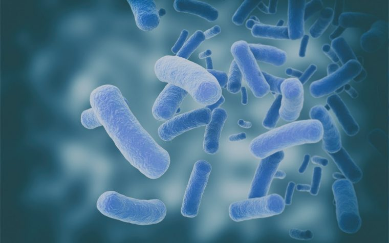 Bacteria Composition Changes Along the Reproductive Tract of Women with Endometriosis, Study Finds